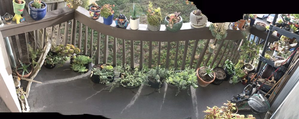 Monterey Bay Horticulture Supply: 218 Reindollar Ave, Marina, CA