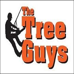 The Tree Guys