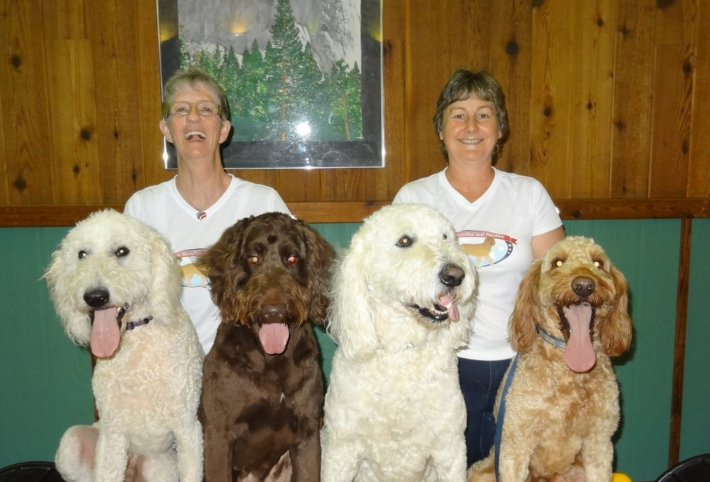 Yankee Doodles and Poodles: 4951 Jefferson Ave, Avella, PA