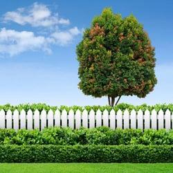 Allgreen lawn tree care pest control 77 davis ave norwood photo of allgreen lawn tree care norwood ma united states sciox Image collections