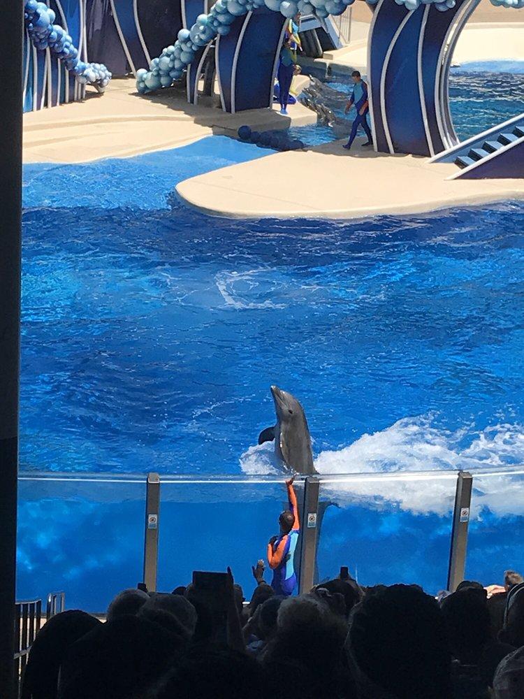 Dolphin Days: 7007 SeaWorld Dr, Orlando, FL