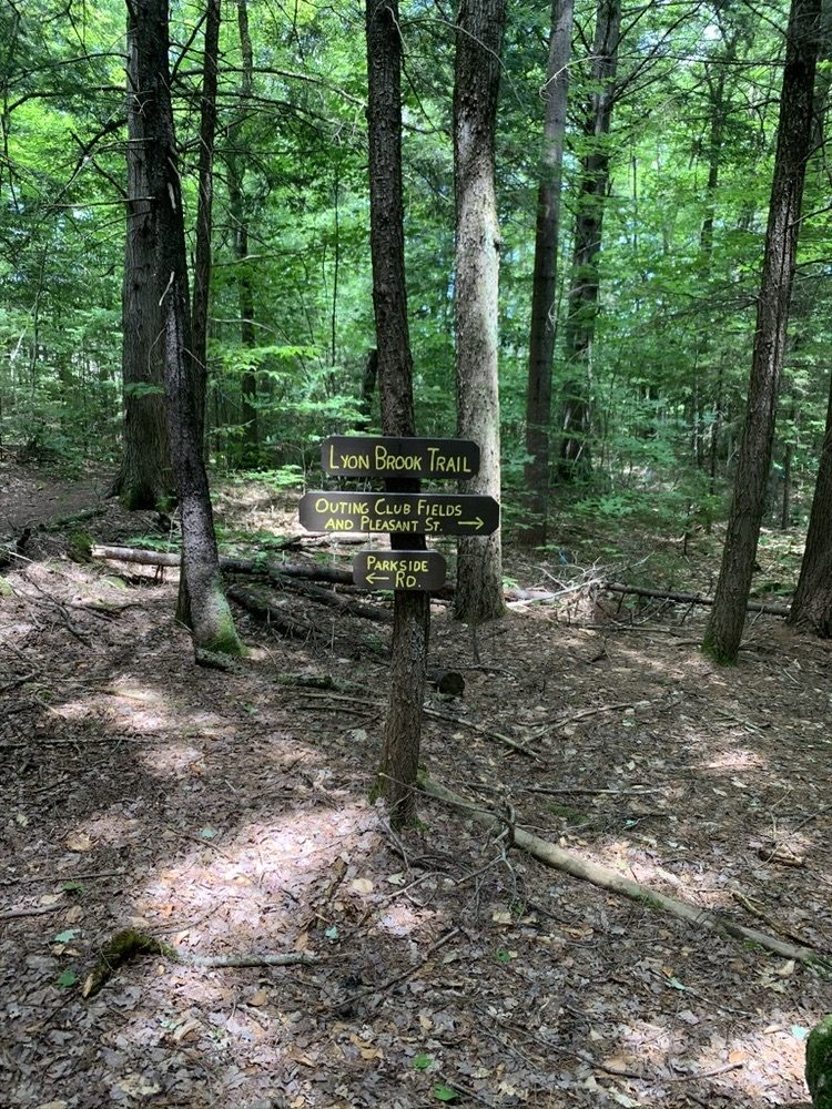 Lyon Brook Trail: 375 Main St, New London, NH