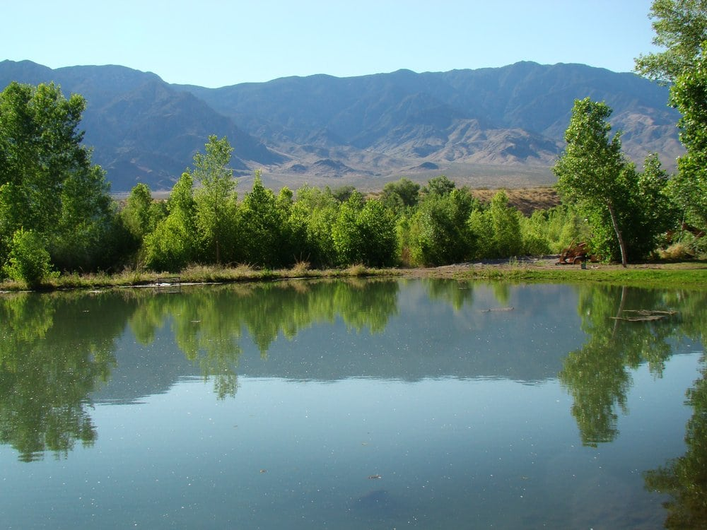 Beaver Dam Lodge And Golf: 452 Old Hwy 91 N, Beaver Dam, AZ