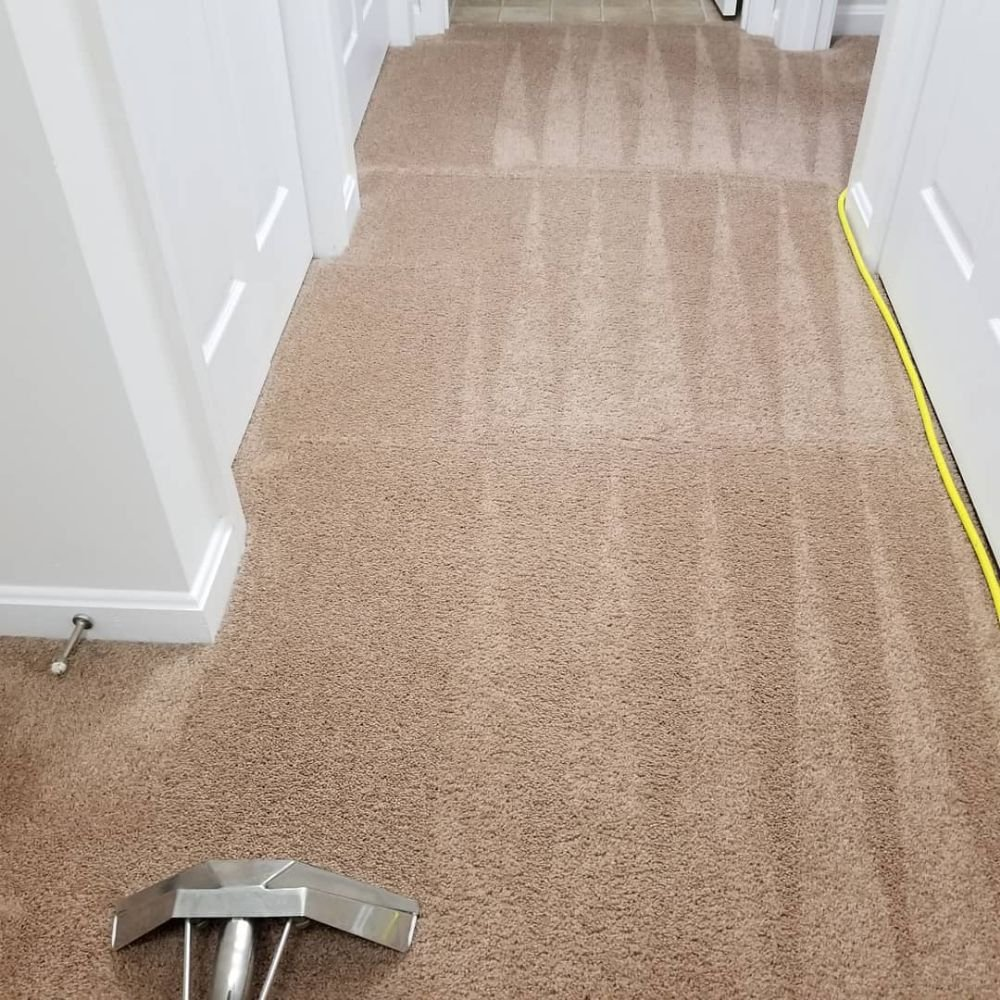 Carpet Cleaning Made Simple: Bel Alton, MD