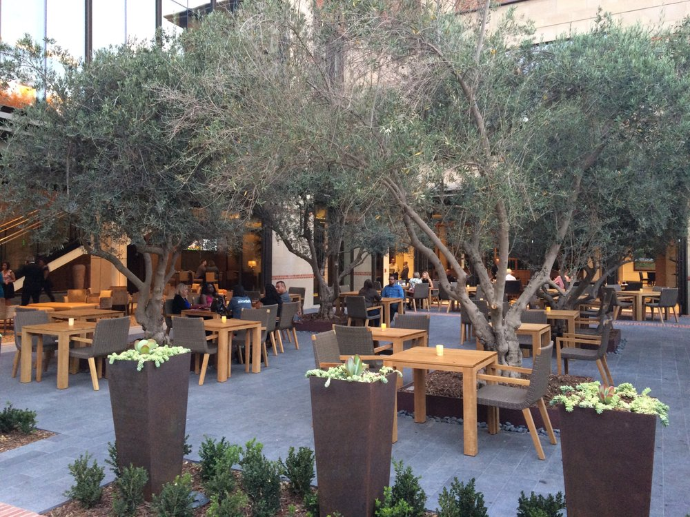 photo of ucla meyer renee luskin conference center los angeles ca united - Olive Garden Los Angeles
