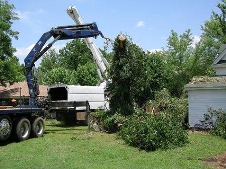 Trimrite Tree Service: 16316 32nd St, Gobles, MI