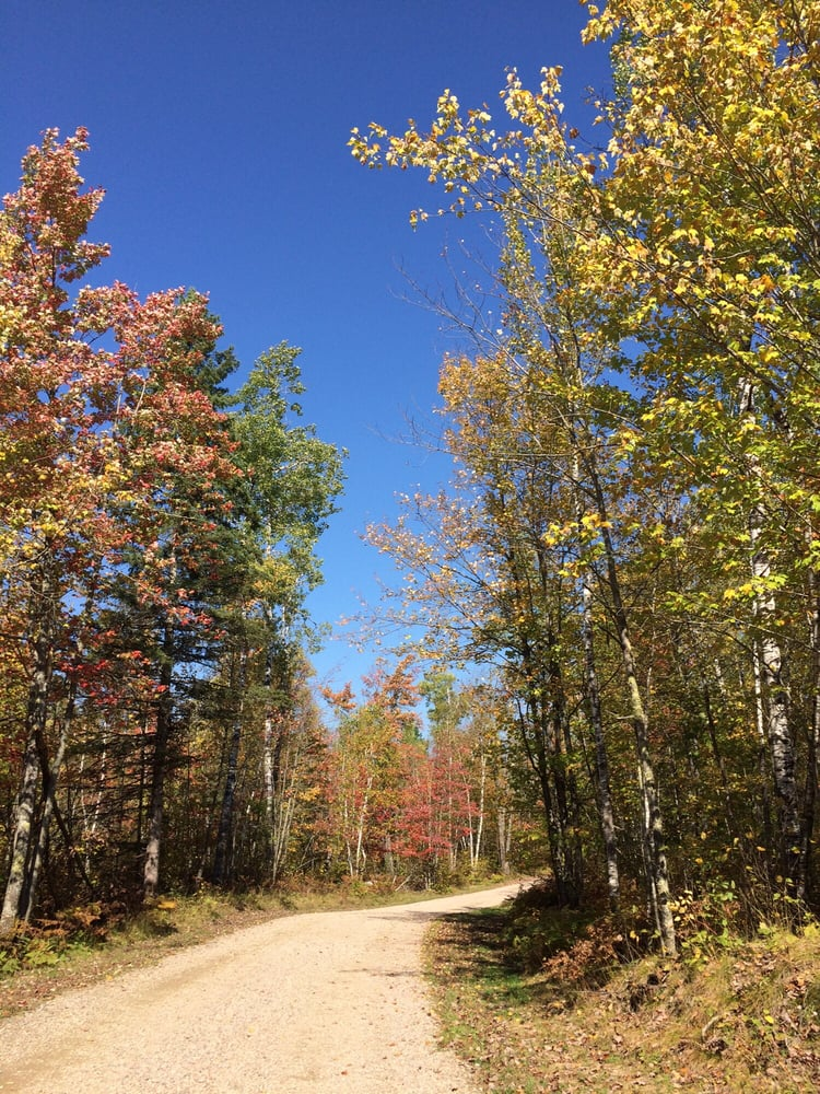 Northern Lights Lodge & Resort: 9089 N Hwy 21, Ely, MN