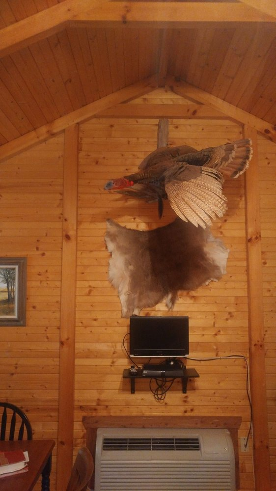 Horseshoe Springs Cabins: Davis, OK
