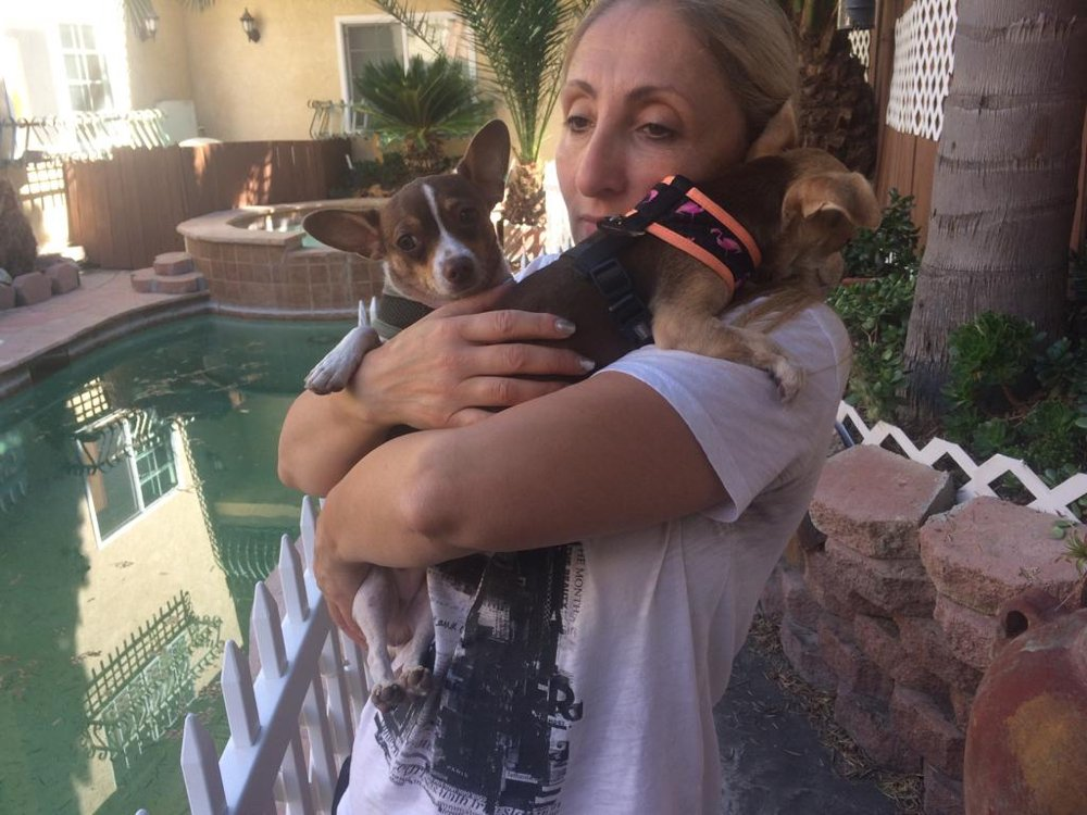 Fay's Loving Pet Care