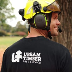 Photo Of Urban Timber Tree Service Portland Or United States Owner And