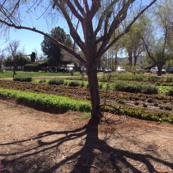 The Farm Kitchen - Temp. CLOSED - 141 Photos & 124 Reviews ...