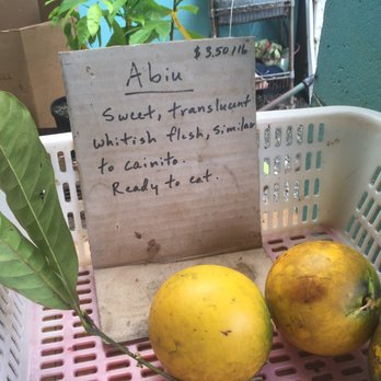 Photo Of Frankie S Nursery Tropical Fruit Trees Specialist Waimo Hi United States
