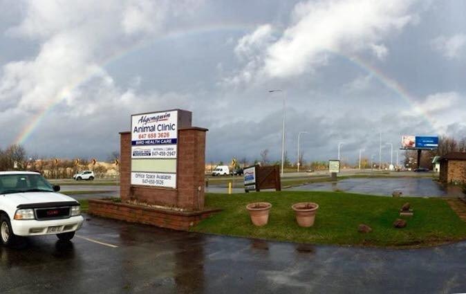 Algonquin Animal Clinic: 10412 S Il Route 31, Algonquin, IL