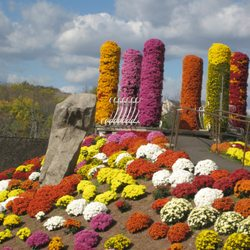 Photo Of Ott S Exotic Plants Schwenksville Pa United States Top Mum
