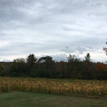 shelburne vineyard 31 photos amp 54 reviews venues