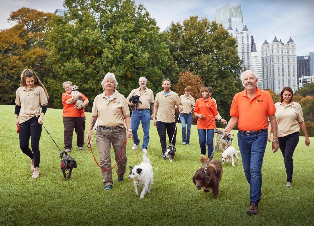 Buckhead Paws Dog Walking and Petting Services of Atlanta