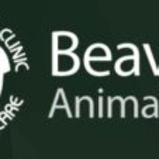 Beaver Animal Clinic - (New) 11 Reviews - Veterinarians