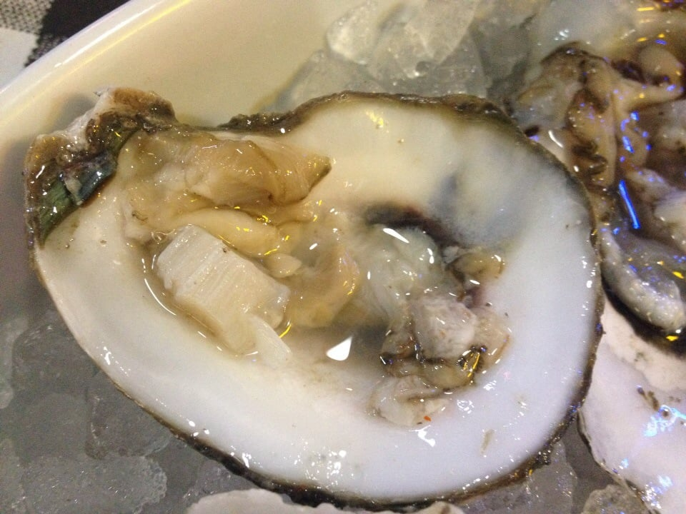Not sure where my oyster is yelp for Flying fish dallas