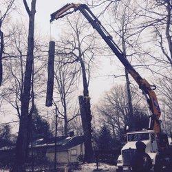 Photo Of Turning Leaf Tree Service Asheville Nc United States