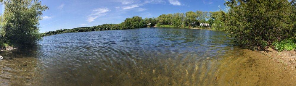 Buckmaster Pond: 350 Pond St, Westwood, MA