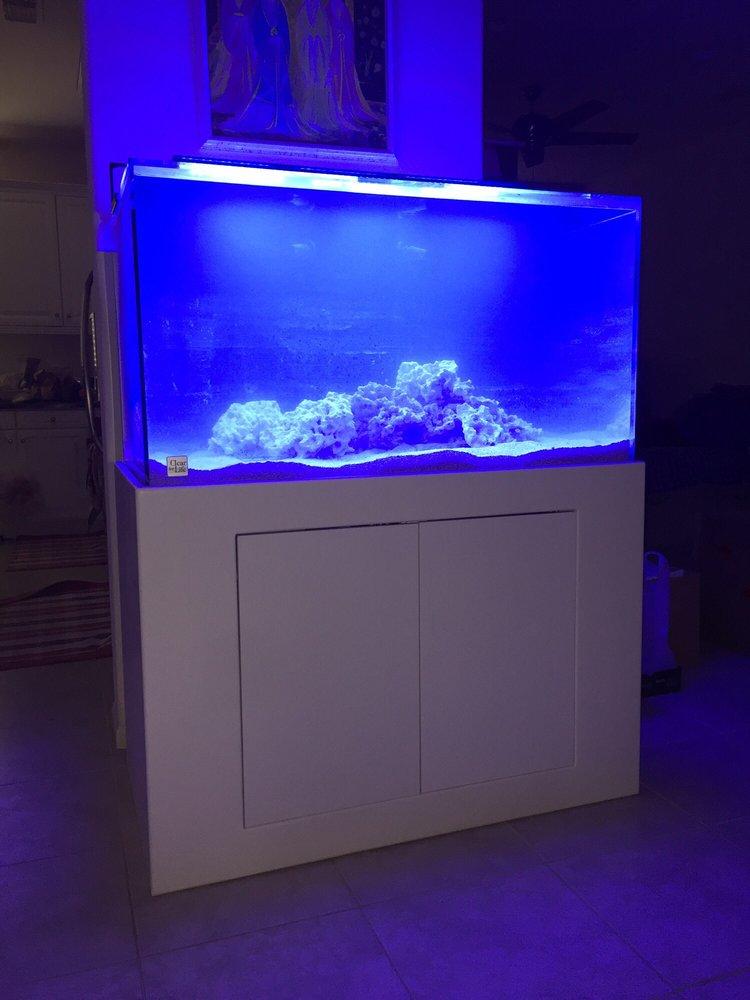 Aquatica Corals and Custom Aquariums