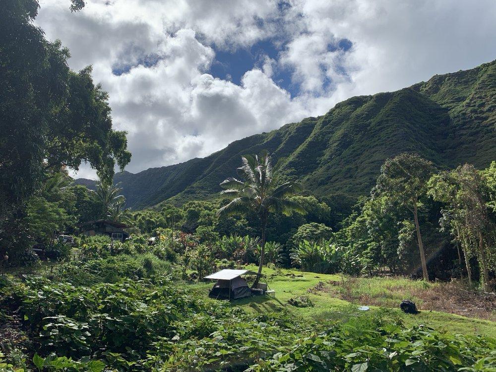 Halawa Valley Falls Cultural Hike: Kaunakakai, HI