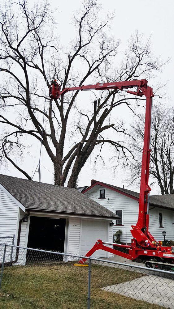 Allen Benjamin Tree Care: 7375 Moorish Rd, Bridgeport, MI