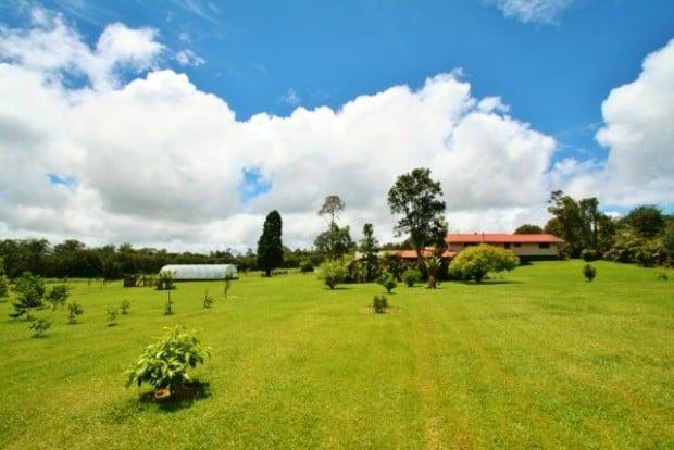 Coleman Farms Hawaii: 18-4050 N Oshiro Rd, Mountain View, HI