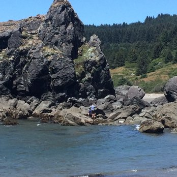 Photo Of Lone Ranch Beach Brookings Or United States When The Tide