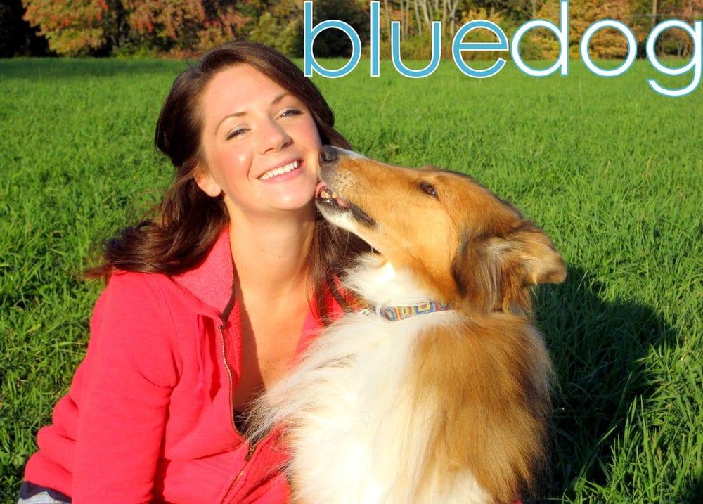 BlueDog: 19 Lupine Rd, Andover, MA