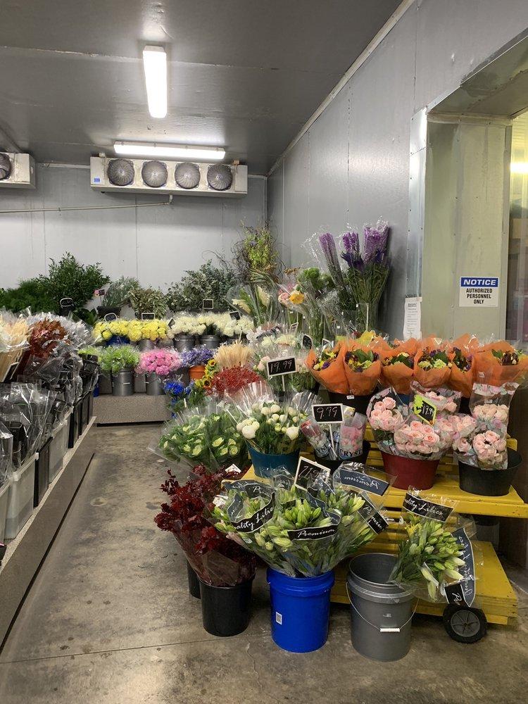 Unlimited Flowers: 13500 SW 128th St, Miami, FL