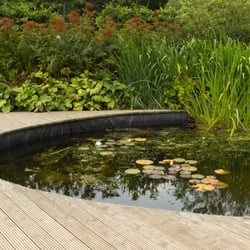 Ponds uk aquatic management get quote landscaping for Garden pond builders essex