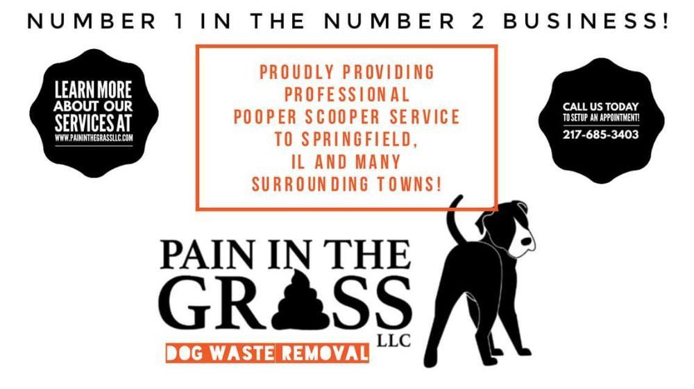 Pain in the Grass Dog Waste Removal: Pawnee, IL