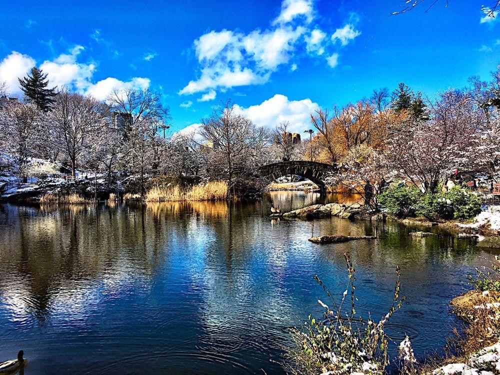 Central Park: 1251 5th Ave, New York, NY