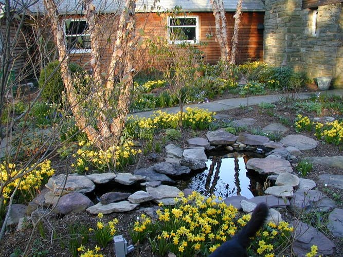 Naturescapes Landscape Specialists: 451 Darby Paoli Rd, Paoli, PA