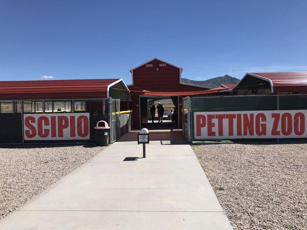 Scipio Petting Zoo: 810 N 800th W, Scipio, UT