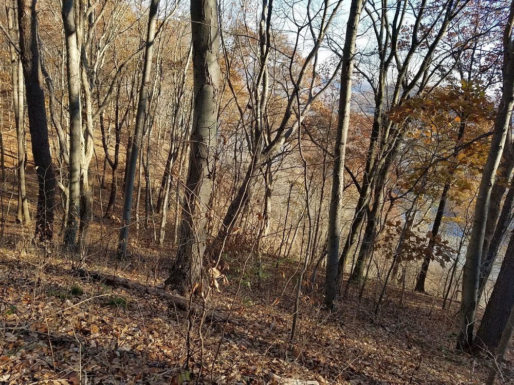 Harrison Hills Park: 5200 Freeport Rd, Harrison Township, PA