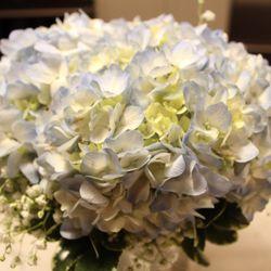 Photo Of Christy S Florist East Brunswick Nj United States Beautiful Hydrangea And