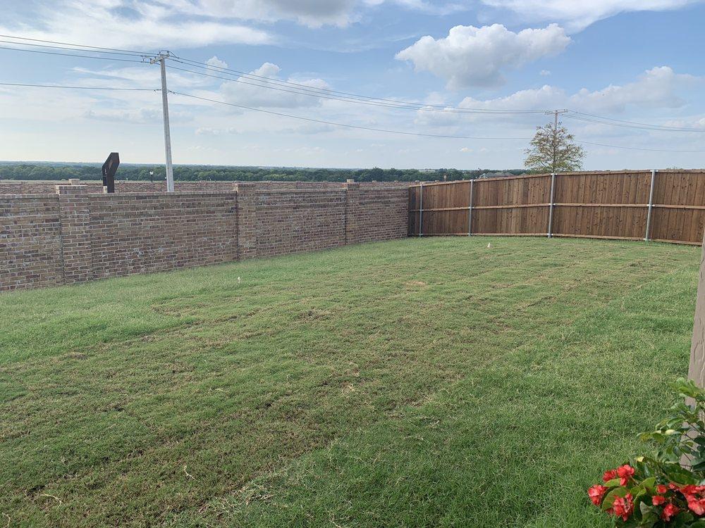 Buffalo Grass Landscapes: 3529 Tulip Dr, Aubrey, TX