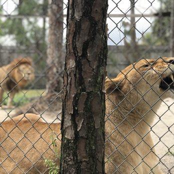 Photo Of Mccarthy S Wildlife Sanctuary West Palm Beach Fl United States