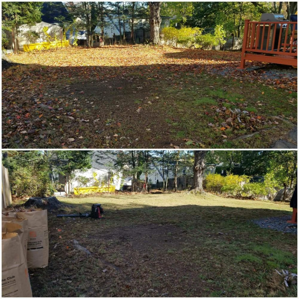 Shampney & Son's Four Seasons Landscaping: Concord, NH