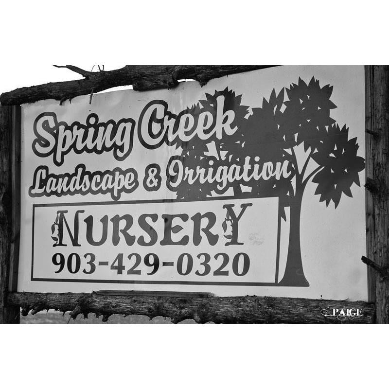 Spring Creek Nursery: 10140 Hwy 377, Collinsville, TX
