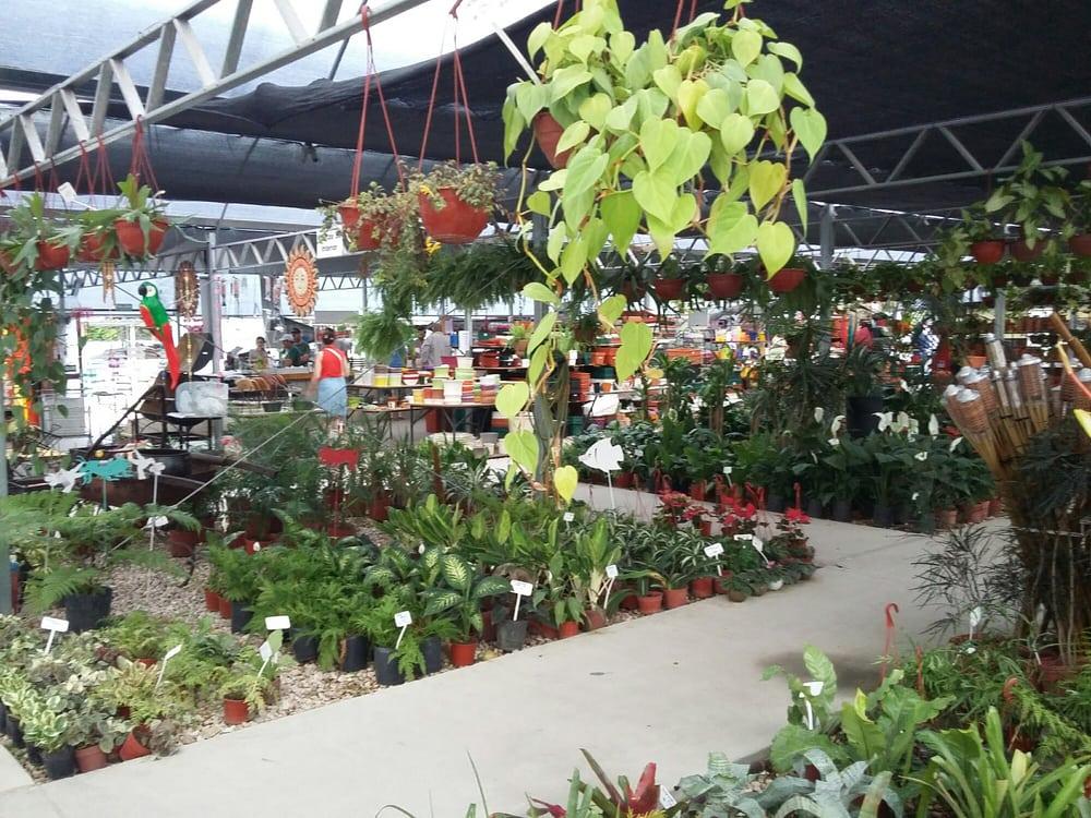 Vivero agronomia florists av francisco beiro 2424 for Vivero agronomia