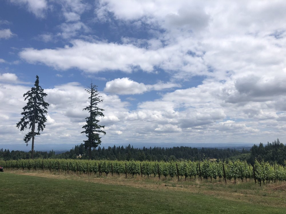 J.K. Carriere Wines: 9995 NE Parrett Mountain Rd, Newberg, OR