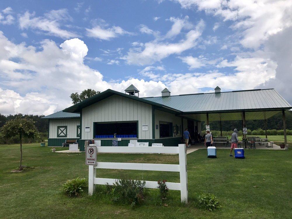 Blueberry Lane Farms: 13240 Blueberry Ln, Otter Lake, MI