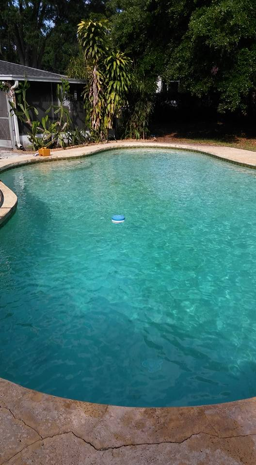 All American Pool Service: 1002 N Parsons Ave, Brandon, FL