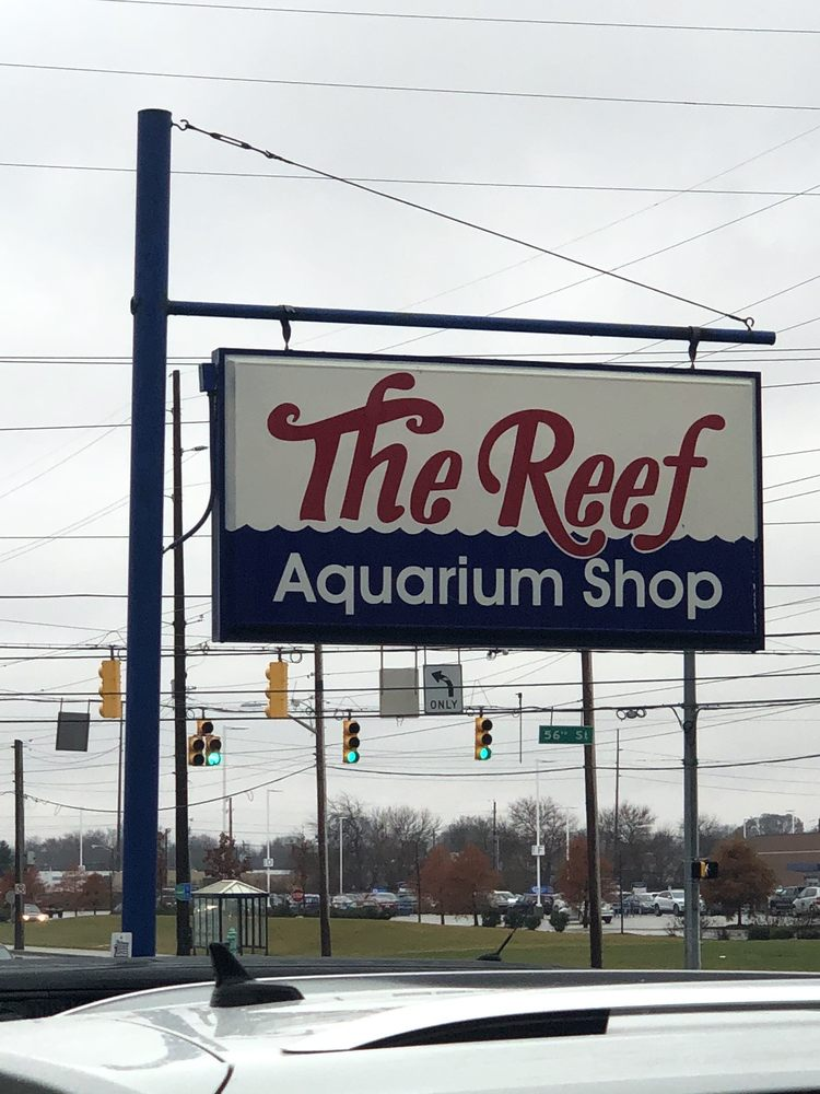 The Reef Aquarium Shop: 5613 N Keystone Ave, Indianapolis, IN
