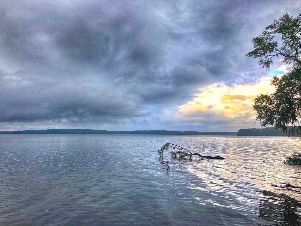 Lake Talquin State Park: 14850 Jack Vause Landing Rd, Tallahassee, FL