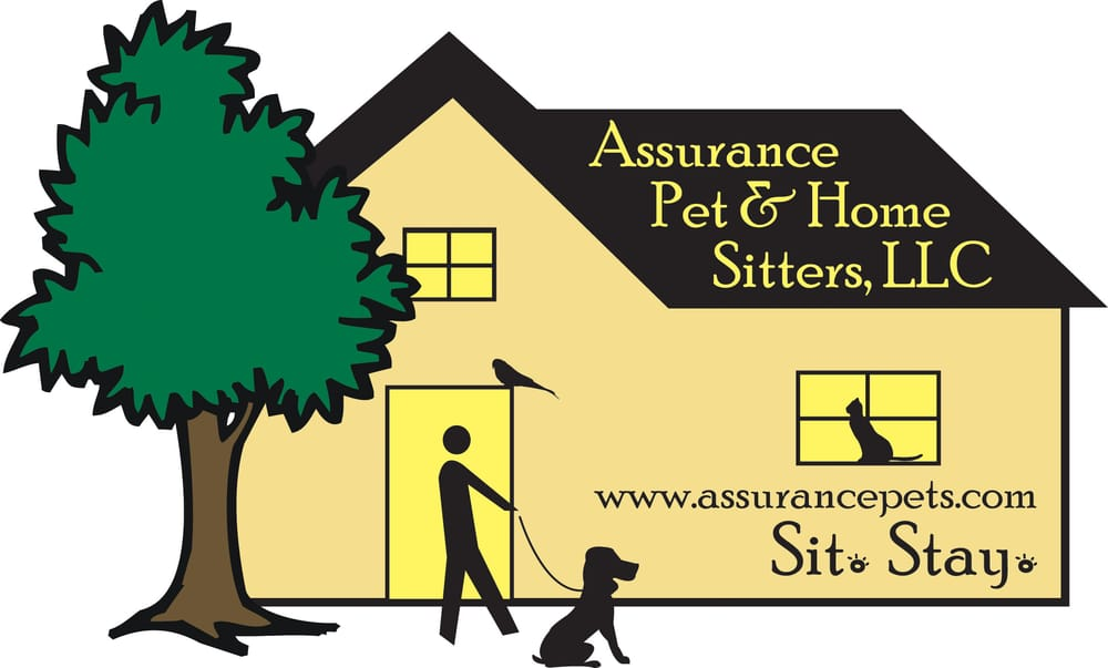 Home Pet Sitters Near Me