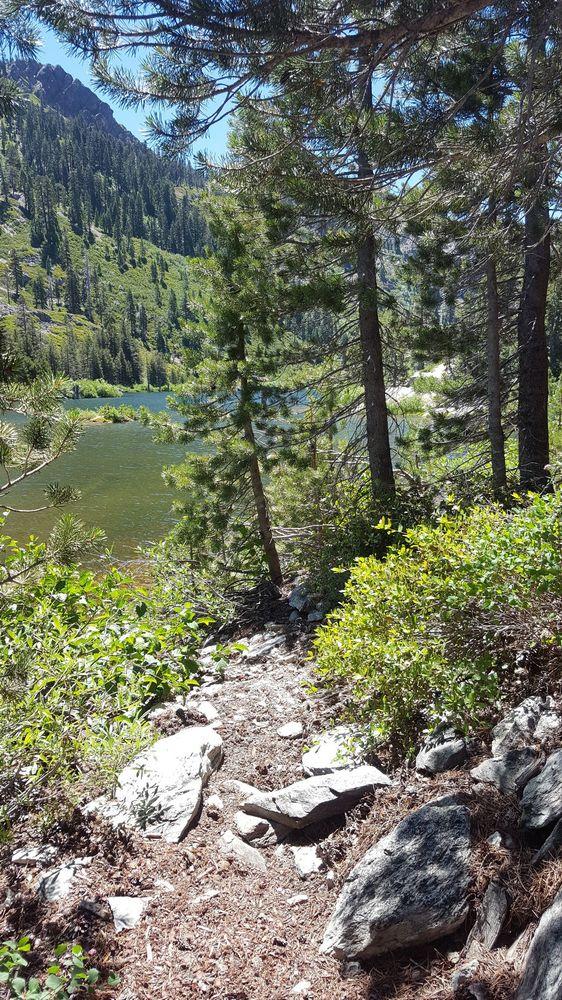 Jamison Mine Trailhead: Jamison Mine Rd, Johnsville, CA